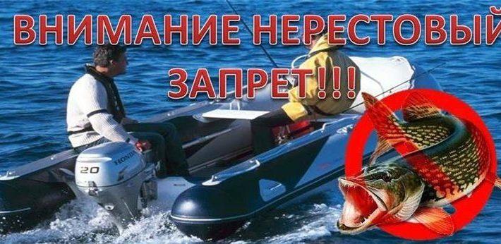Нерестовый запрет 2018 в Московской области и города Москвы –